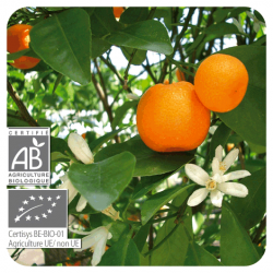 Aeqt Bio Mandarina Antiestres 10ML Pranarom