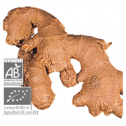 Aeqt Jengibre Bio Estomago Diarrea 5ML Pranarom